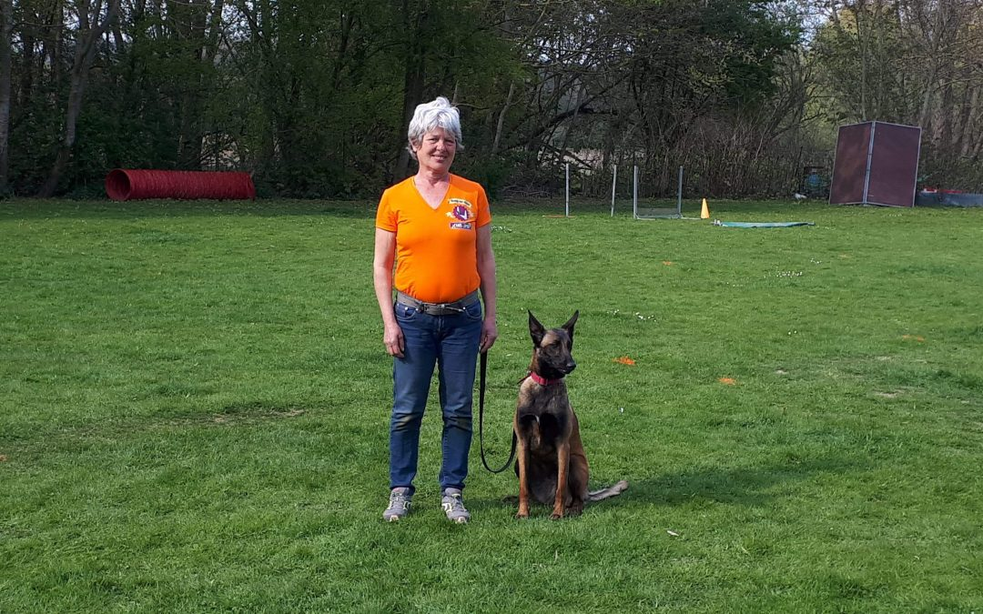 Pass Flyball Nolly et Violette