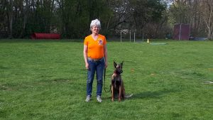 Pass Flyball Nolly